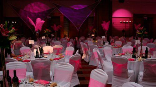 10 temáticas para realizar una hermosa fiesta de quince (4)
