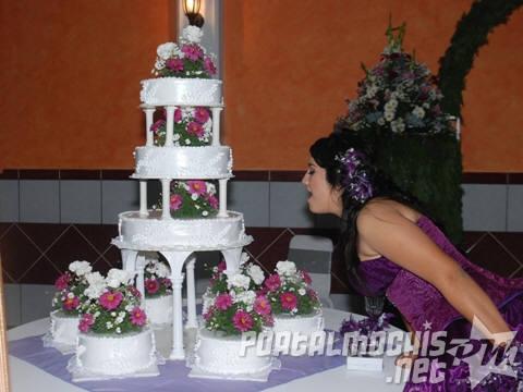 10 Pasteles decorados para quince años (6)