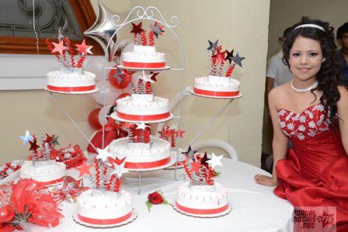 10 Pasteles decorados para quince años (8)